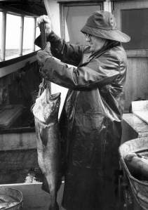 Bob weighing a blackcod.