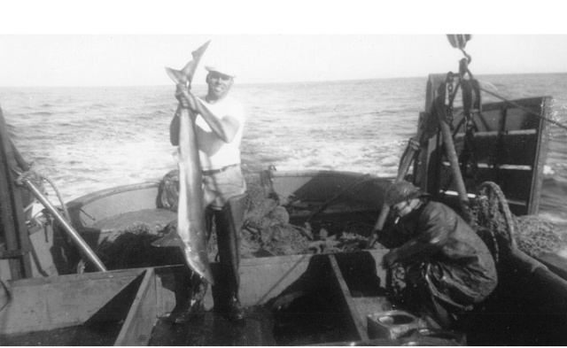 Captain George Moskovita fishing for shark livers