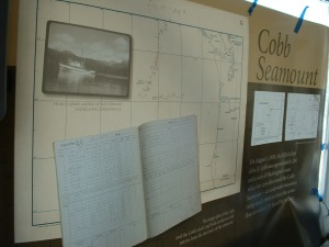 The Cobb Seamount display