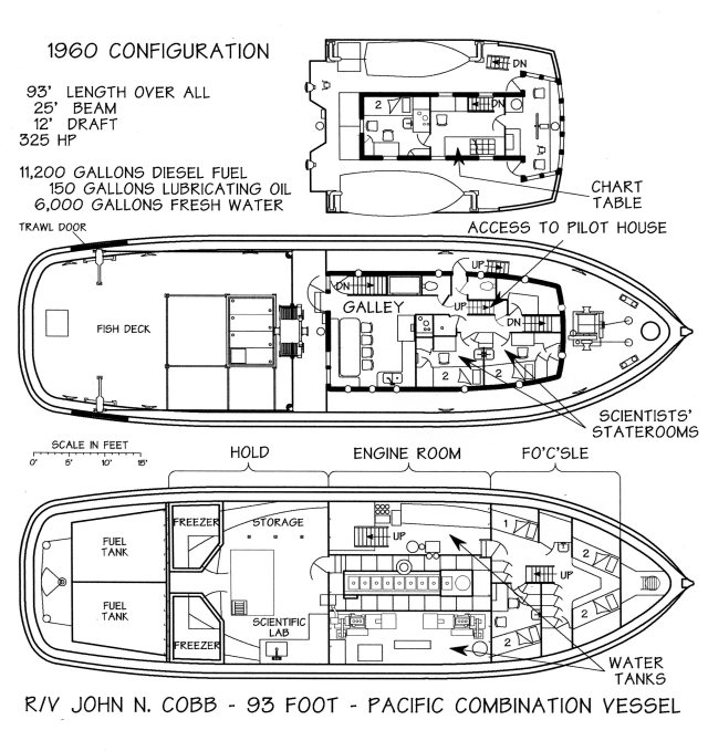 Cobb deck lay out, Hitz drawing
