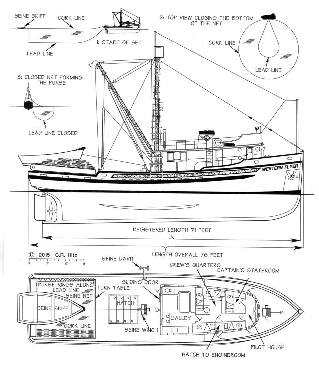 Drawing of the Western Flyer as seiner, Hitz drawing