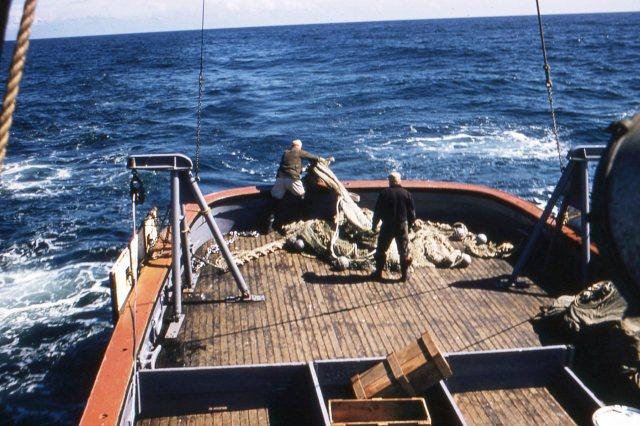 Arnie heaving the cod end over (Hitz photo)